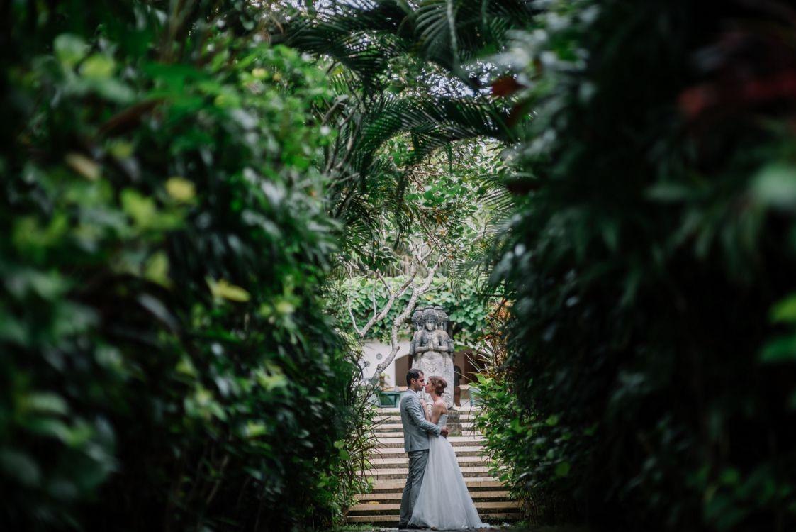 Tropical Wedding 2--
